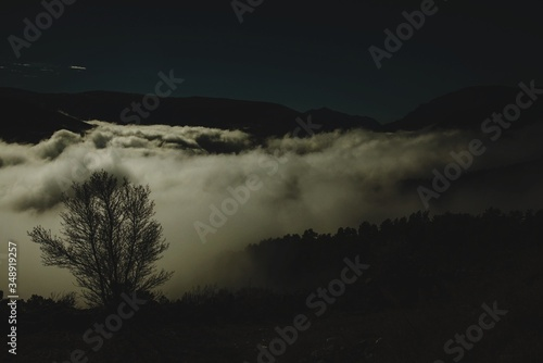 Fototapety, obrazy: Silhouette Trees On Mountains By Clouds At Dusk
