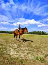 Boy Horseback Riding On Field Against Sky