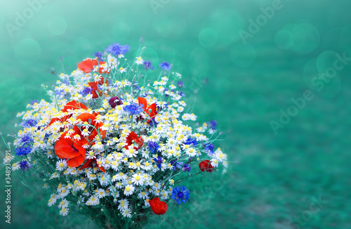 Fototapety, obrazy: Wild flower bouquet with daisies and cornflowers.
