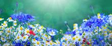Wild Flower Bouquet With Daisi...