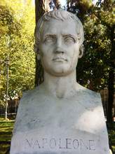 Close-up Of Napoleon Statue Against Trees