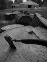 High Angle View Of Axe On Tree Stump In Lumber Industry