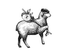 Illustration Of The Vagabond Sheep Wearing A Cap On His Headher Head. Wandering Sheep With A Bundle On A Stick. Engraved Vintage Style Illustration Of The Sheep. Can Be Used For Poster, Package, Logo