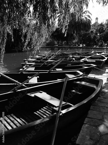 Cuadros en Lienzo Rowboats Moored In River