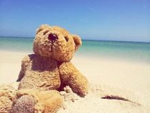 Teddy Bear On Beach Against Sky