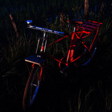 Sunlight Falling On Red Bicycle