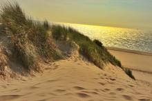 San Dunes Overlooking Calm Sea