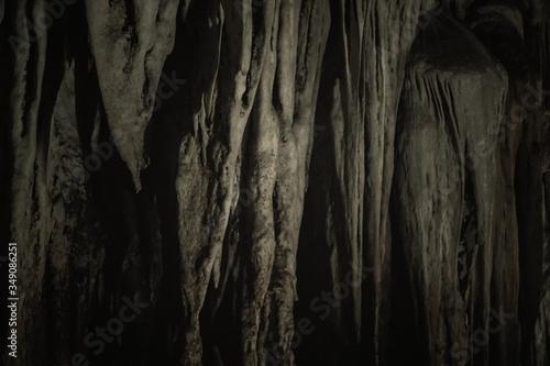 Fototapeta Full Frame Shot Of Tree Trunk