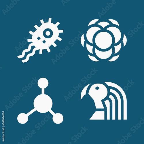 Photo Set of 4 adhesion filled icons
