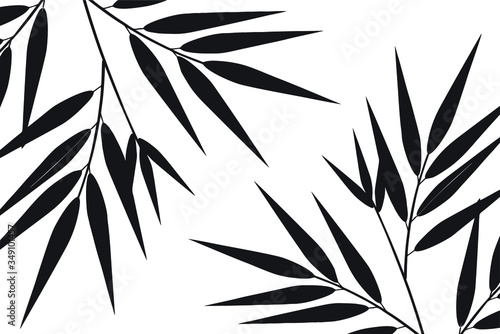 Bamboo leaf composition in design Canvas Print