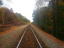 Railroad Tracks Amidst Trees During Autumn