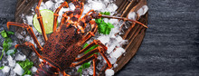 Raw Fresh Cape Rock Lobster, W...