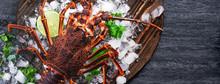 Raw Fresh Cape Rock Lobster, W...
