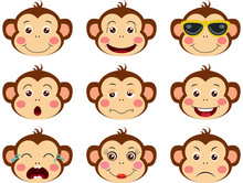 Faces Of Monkeys With Feature ...