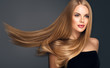 canvas print picture - Beautiful model woman with shiny  and straight long hair. Keratin  straightening. Treatment, care and spa procedures. Blonde beauty  girl smooth hairstyle