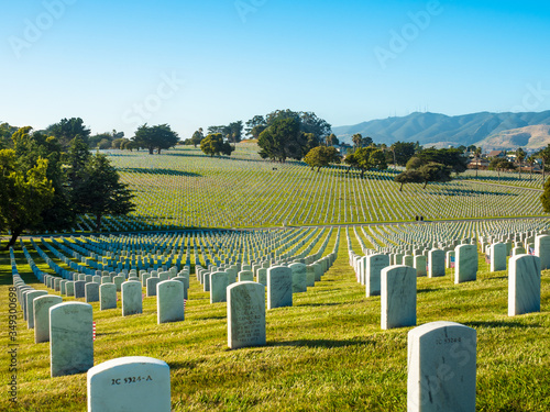 Slika na platnu american veteran cemetery in the summer