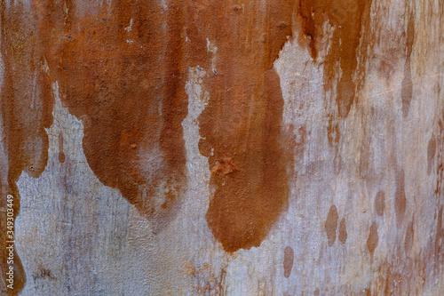 Desgaste Canvas Print