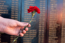 Carnations In A Female Hand On The Background Of On The Memorial Plaque Fallen Soldiers In World War II