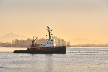 Early Morning Tugboat. A Tugbo...