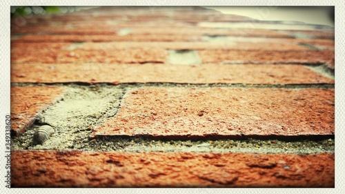 Fotografia Paving Stones On Footpath
