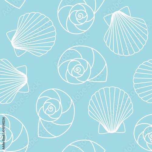 Valokuvatapetti white different types of seashells nautilus pompilius, oyster spiral on blue bac