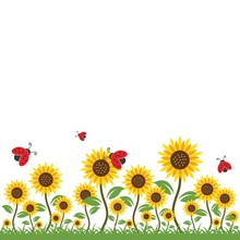 Sunflowers Background Vector I...