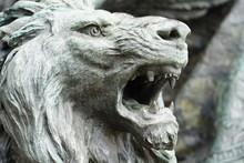 Head Of Lion Venice Italy