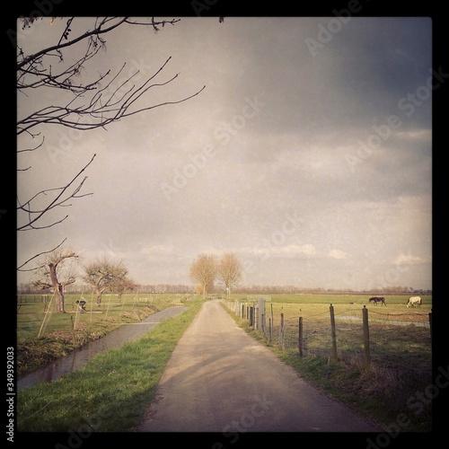 Tela Country Road