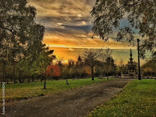 Trees And Footpath At Kelvingrove Park Against Sky Canvas Print
