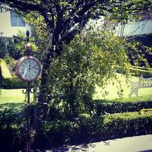 Street Clock On Sidewalk