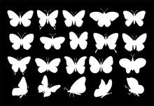 Butterflies Silhouettes. Sprin...