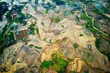 Aerial Image Of Terraces In Y ...