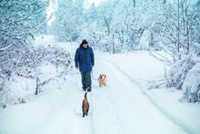 A Man With A Dog On A Leash Wa...