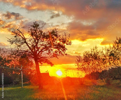 Fototapety, obrazy: Scenic View Of Sunset Over Field