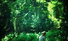 Man Enjoying Rain In Forest