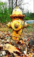 Rusty Fire Hydrant On Field