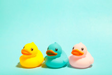 Colorful Rubber Bath Ducks On Blue Background