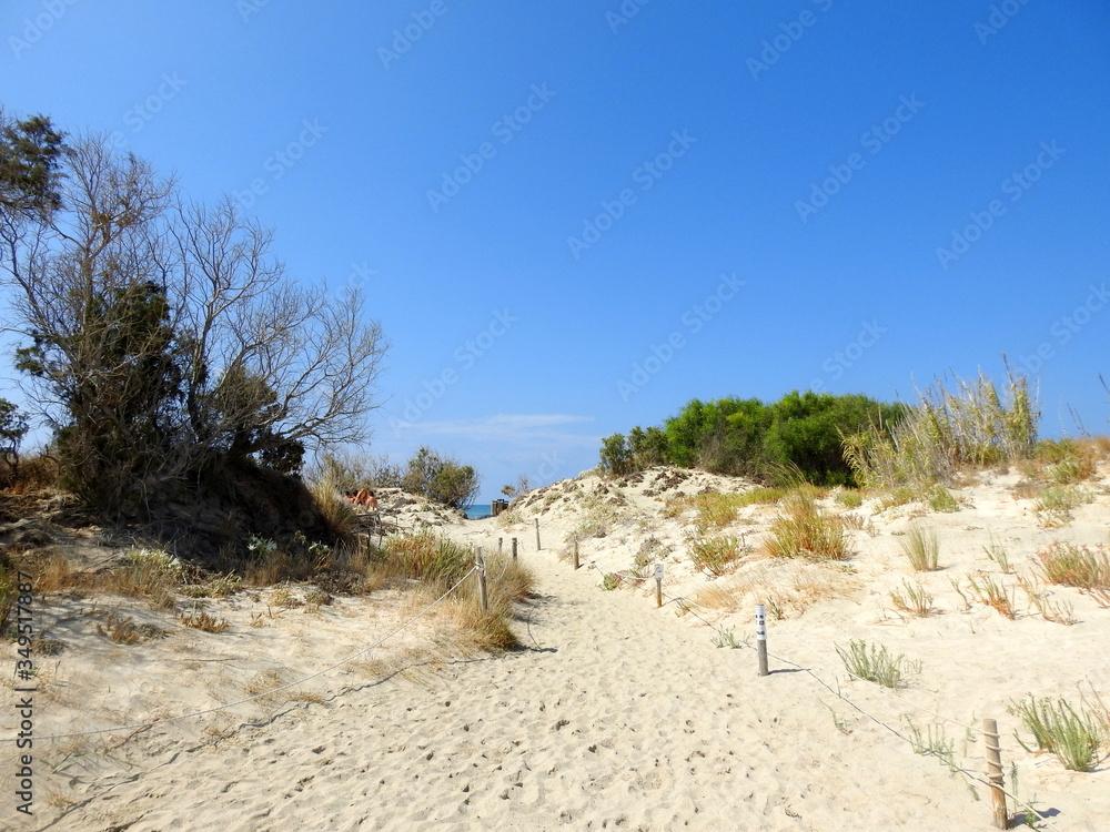 Fototapeta wydmy, piasek, plaża, morze, niebo, słonecznie, słońce, lato, wakacje, podróże, nikt, spokój, cisza