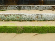 Green Ulva (Enteromorpha) Intestinalis Cover On The Concrete Staircase Of The Breakwater