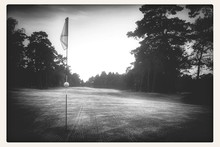 Golf Flag On Course In Forest