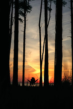 Soft Focus Silhouette Of A Cou...
