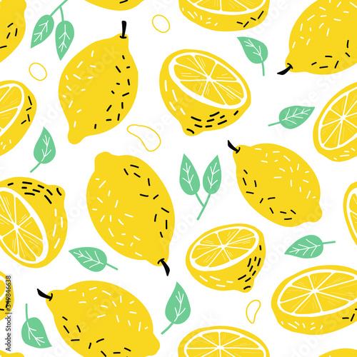 Fotografie, Obraz Hand drawn lemon, a slice of lemon