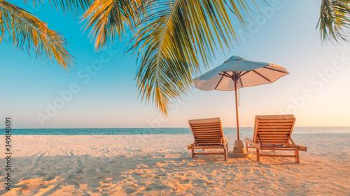 lounge chairs on a tropical beach