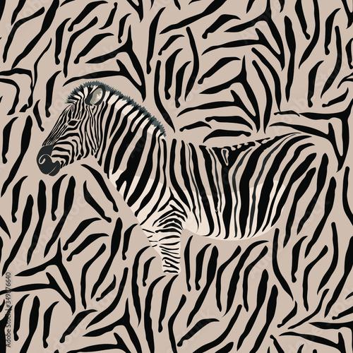 Zebra skin, striped pattern Canvas Print