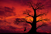 Red Sunset And Silhouette Of A...
