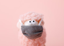 Toy Lamb With Face Mask