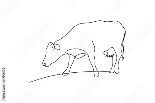 Fotografia Cow on pasture in continuous line art drawing style