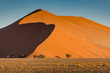 canvas print picture - Light and shadow over the crest of orange sand dunes landscape in Namib Desert, Namib-Naukluft National Park, Namibia, South Africa.