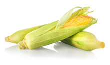 Three Corncobs Isolated