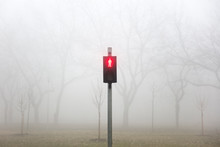Trafic Lights In The Foggy Win...
